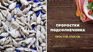 🌻 ПРОРАЩИВАНИЕ СЕМЕЧЕК ПОДСОЛНУХА (очищенных) | Простой способ проращивания семян подсолнечника