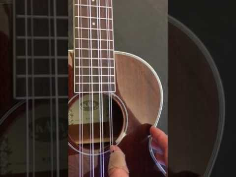 8-string-ukulele-tuning-pitches