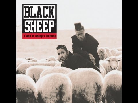 Black Sheep The Choice is Yours lyrics on screen and in description
