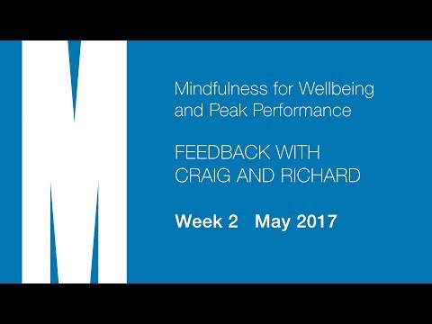Feedback from Craig and Richard - Week 2 - May 2017