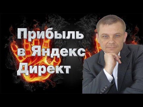 Прибыль в Яндекс Директ (Евгений Вергус)