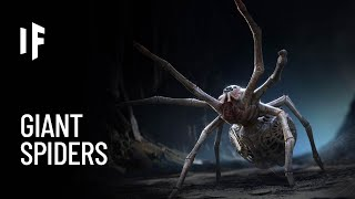 What If Spiders Were the Size of Humans?