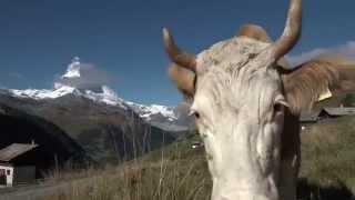 2015_PERSKINDOL SWISS EPIC, Stage 5, Grächen - Zermatt