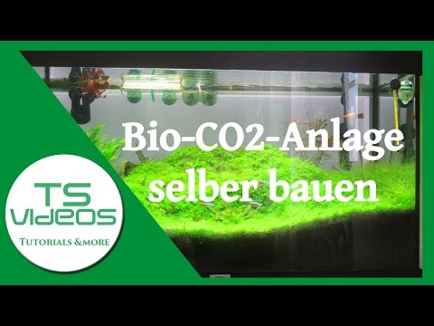 diy bio co2 anlage f r aquarien selberbauen music search engine. Black Bedroom Furniture Sets. Home Design Ideas