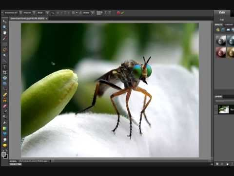 how to make a watermark using photoshop elements 12
