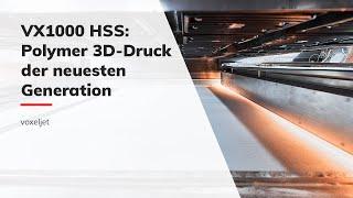 Industrieller Polymer 3D-Drucker VX1000 HSS (DE)