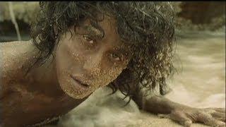 "euronews cinema - ""حياة بي "" قصة شاب ونمر تتحول إلى فيلم سينمائي"