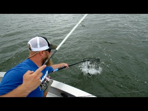 Fishing Rapalas In Weeds For South Dakota Walleyes - Go Angling E11