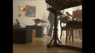 Винтовая лестница 1 Серия
