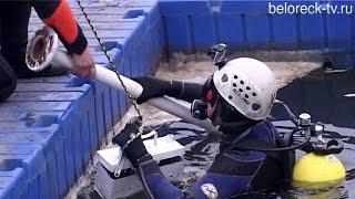 Пошуково-рятувальні роботи водолазів