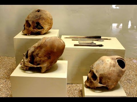 Elongated Skulls Of Paracas Peru: Exploring The New Museum