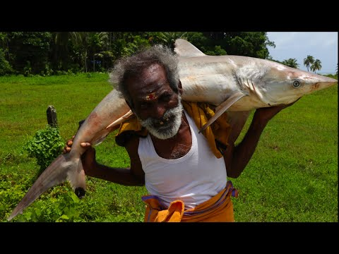 ISLAND SHARK !!! Andaman SURA Puttu SORU Prepared by my daddy Arumugam / Village food factory from YouTube · Duration:  13 minutes 17 seconds