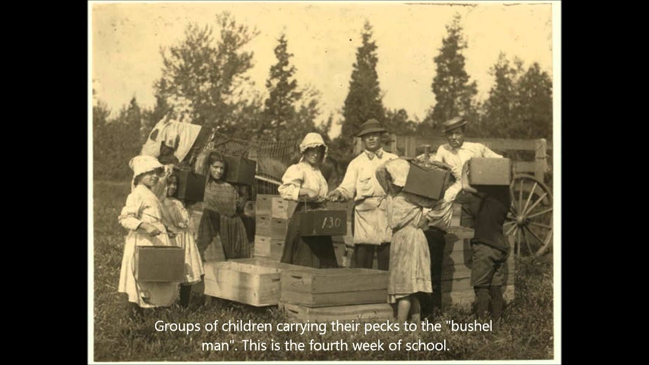 an analysis of child labor laws until 1900 Historical analysis of labor in progressive era politics there was no nationally mandated minimum wage until 1938 which remained exempt from child labor laws.