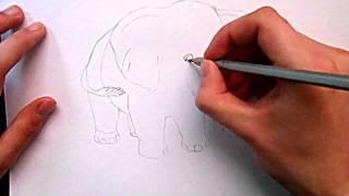 Видео: как нарисовать слона?(обучающее видео по рисованию слона простым карандашом поэтапно для начинающих., 2016-01-04T09:28:06.000Z)