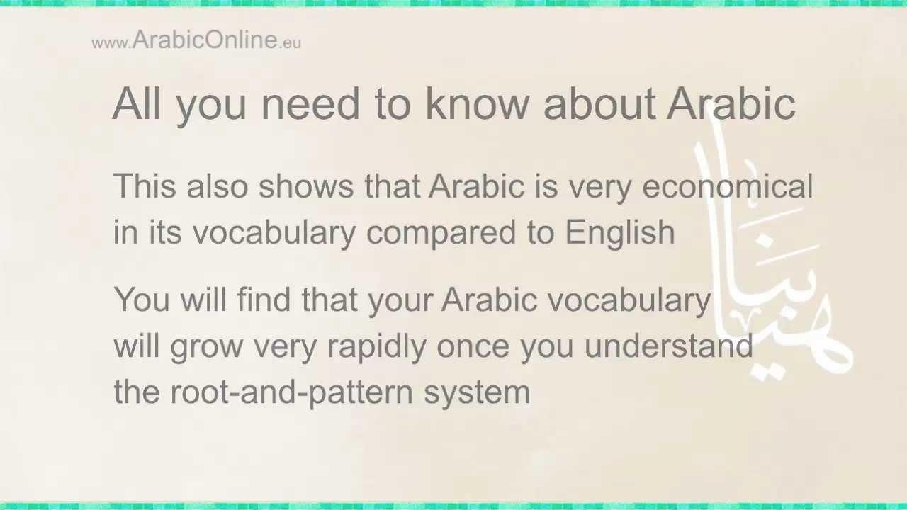 Modern Standard Arabic: 5 Reasons why you should learn MSA and 1