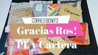 Correo bonito de Ros por mi cumpleaños!!! Pocket letter y Cartera