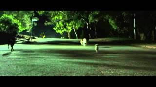 Бульвар страха _ Rosewood Lane (2011_HDRip) [лицензия] трейлер