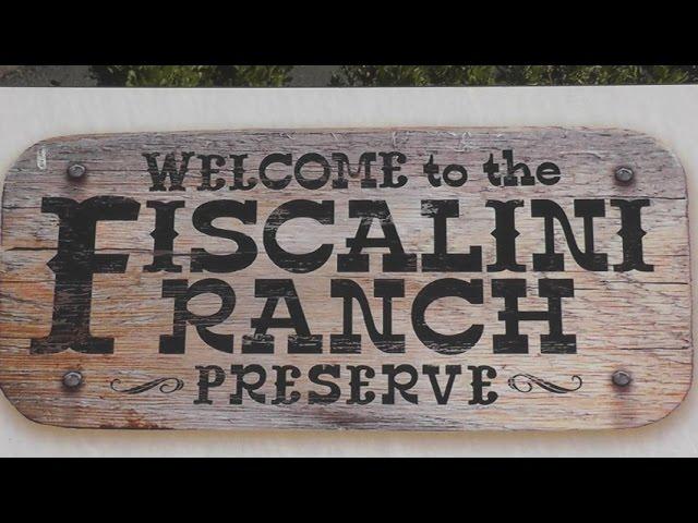 Fiscalini Ranch Preserve - Bluff Trail - Cambria, California