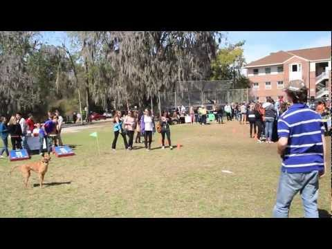 University of Florida- Why live on Campus?