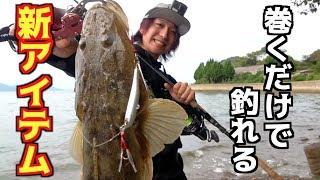 巻くだけで魚が釣れる!?あの高級魚が釣れた! thumbnail