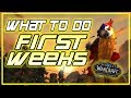 WoW BFA First Weeks - What To Do?! - Quick Guide What To Focus On