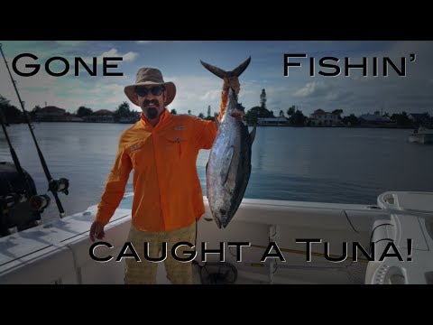 Deep Sea Fishing Charter Offshore In The Gulf Of Mexico The Boat Life