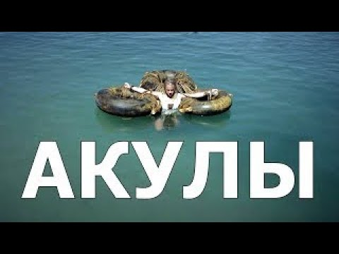 Кино 2017 Новинка Империя Акул (Мощный Фильм) - Видео онлайн