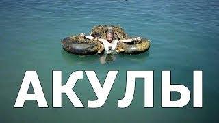 Кино 2017 Новинка Империя Акул (Мощный Фильм)