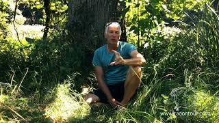 TAO on TOUR - Life - Harald bharandanda Noderer