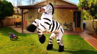 Dope Zebra - Rhett & Link (Official Original Video)(This zebra is dope. Extended song on iTunes: http://dft.ba/zebra ** Official T-SHIRT: http://dft.ba/zebratee Thanks to Chuck Testa! Here's his local commercial that ..., 2012-01-19T14:00:00.000Z)