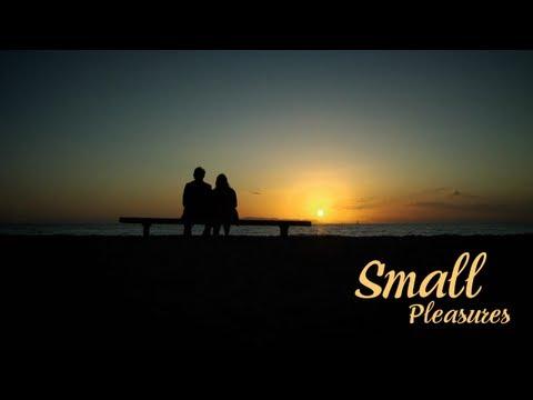 Small Pleasures / Μικρές Χαρές (2008)