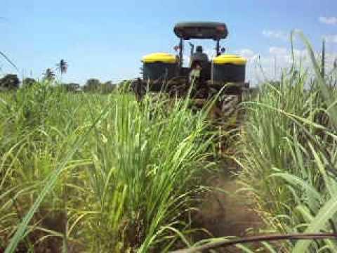 Fertilizacion de ca a youtube for Fertilizacion de estanques piscicolas