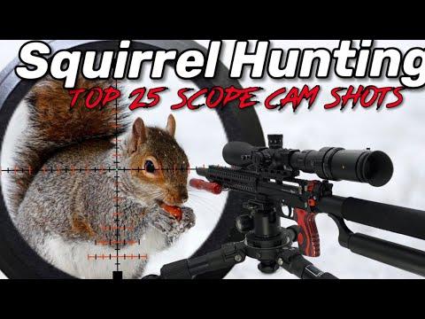 Squirrel Hunting EDgun Leshiy
