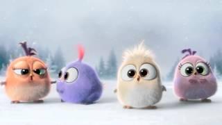 Angry Birds - O Filme   Feliz Natal!