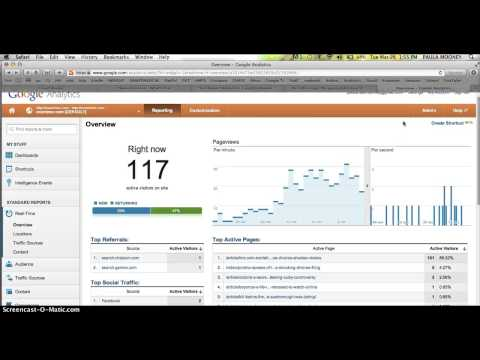 Using Google Analytics Real-Time to Check My Examiner.com Article Pageviews - WRITE FOR EXAMINER