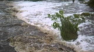 Tormenta tropical Arlene, Aldama tamaulipas