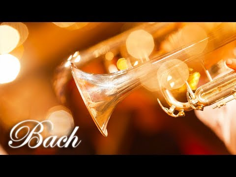Classical Music for Studying, Concentration, Relaxation | Study Music | Trumpet Instrumental Music