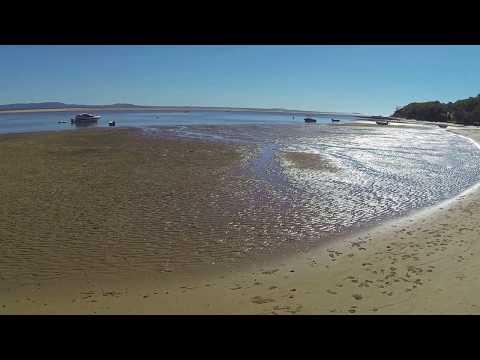 Endeavour Park Beach, Seventeen Seventy (QLD) - dogexplorer.com.au