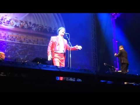 Rufus Wainwright: Trolley Song mp3