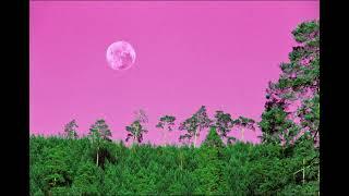 ✧・゚: Strawberry Moonlight :・゚✧ // Fantasy Lo-fi