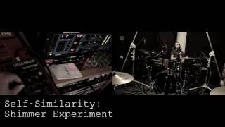 Self Similarity: Shimmer Reverb Experiment