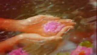 Baixar Fresh - Dhyan Dharo परम पिता का - BK Dr.Dilip Nalage - BK Ramesh - BK Sudhir Pal.