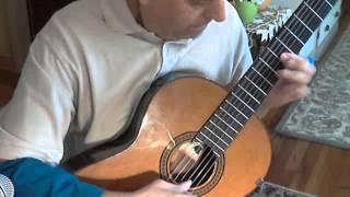 La Golondrina,Instrumental Guitar solo.