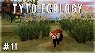 A Bamboo Forest for Red Pandas! | Tyto Ecology Let s Play - Episode 11