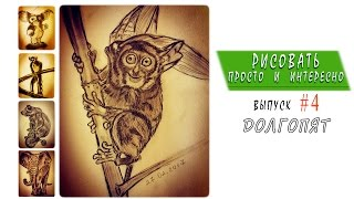 Как нарисовать долгопята (Siau Island tarsier) - [Speed Drawing] - Выпуск #4