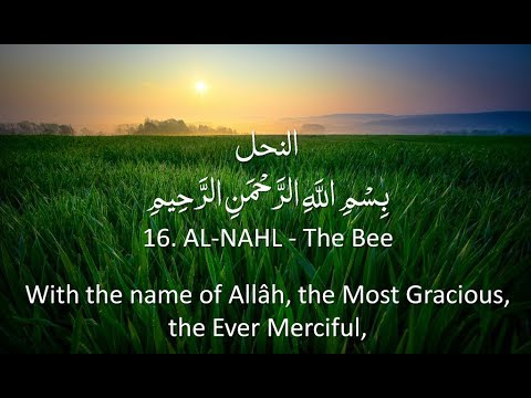 surah-16---an-nahl:-🔊-english-only-recitation-with-arabic-subtitles.-nature-backgrounds