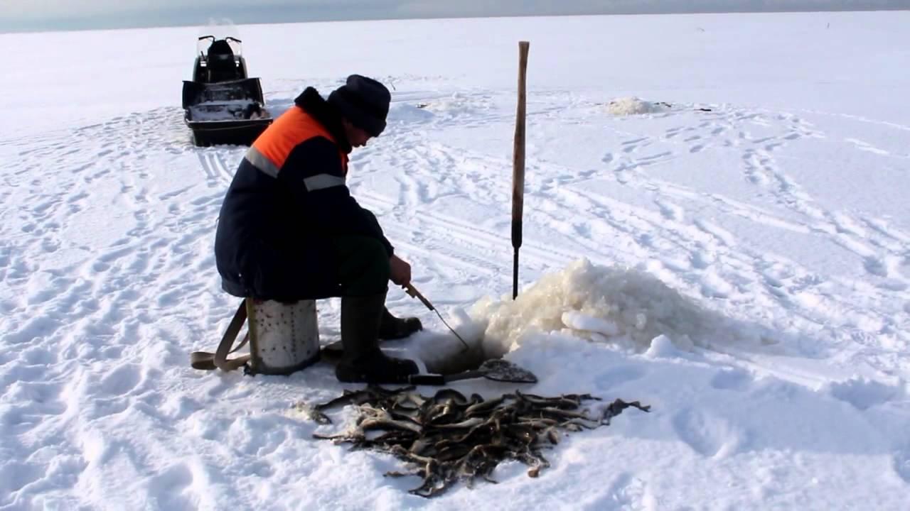 Зимняя рыбалка на навагу что нужно фото