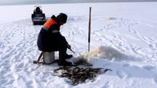 Белое море...ловим навагу!(, 2014-04-08T07:13:59.000Z)