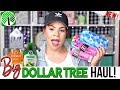 Massive DOLLAR TREE HAUL 2018  | NEW Exciting Dollar Store Finds Sensational Finds