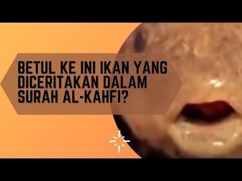 Ikan Yang Diceritakan Dalam Surah Al-Kahfi